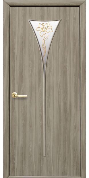 Межкомнатные двери Бора со стеклом сатин и рисунком Р1 bora-50