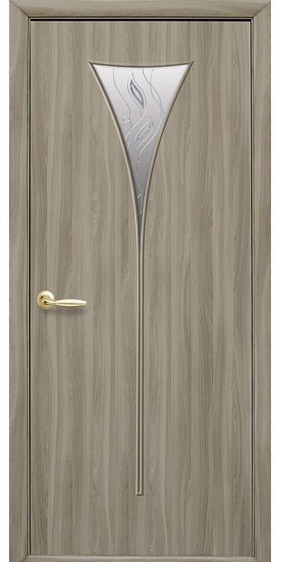 Межкомнатные двери Бора со стеклом сатин и рисунком Р2 bora-52
