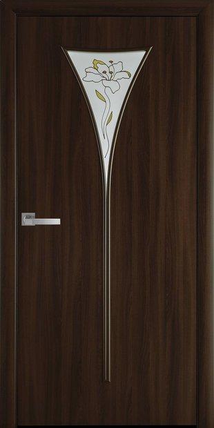 Межкомнатные двери Бора со стеклом сатин и рисунком bora-55
