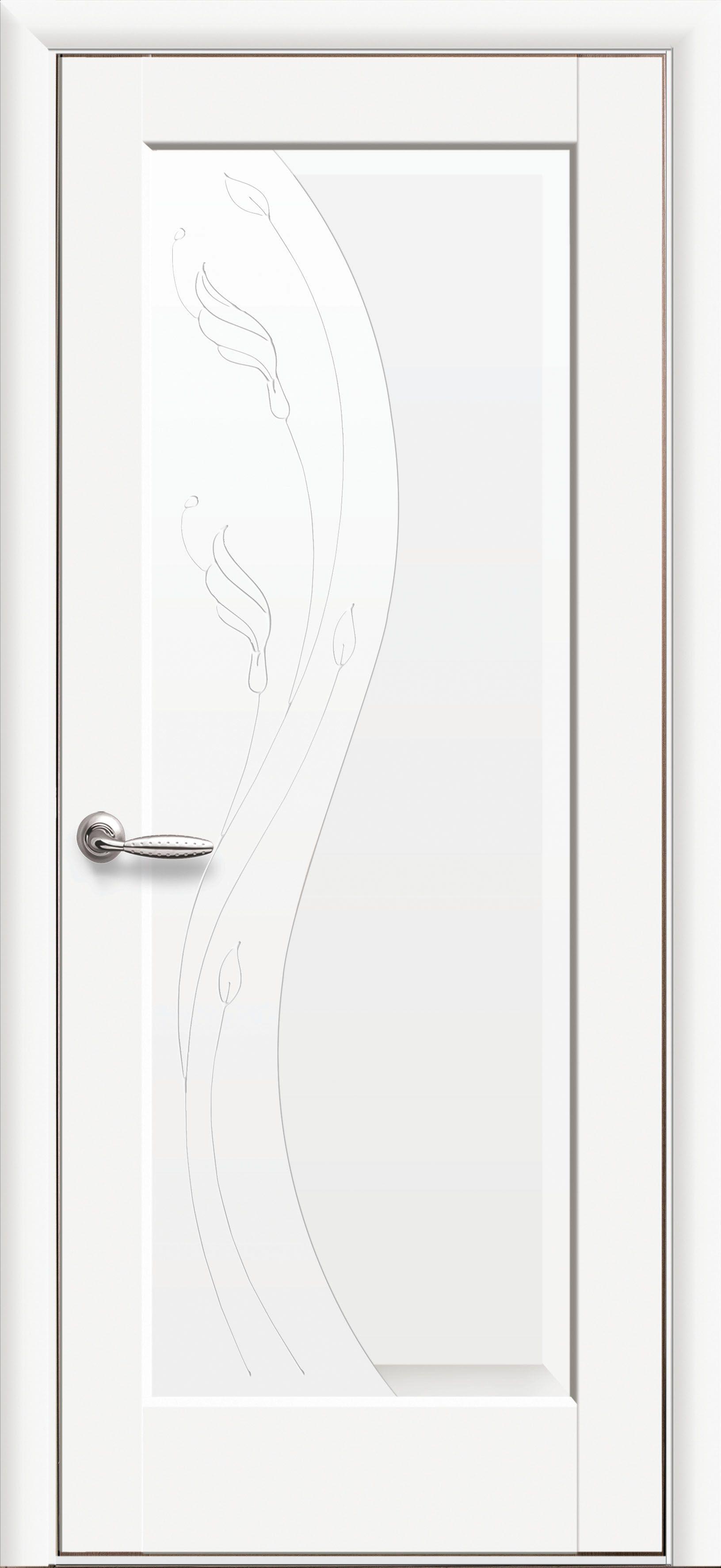 Межкомнатные двери Ескада глухое с гравировкой